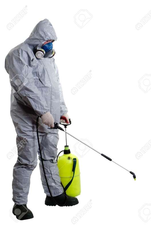 24 Hour Emergency Pest Control Services near Worcester, MA