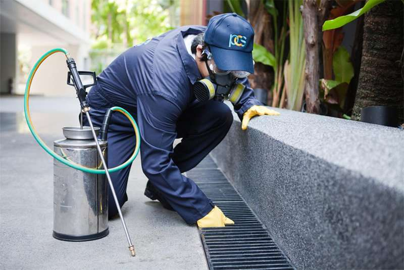 pest control contractors in Tuttletown