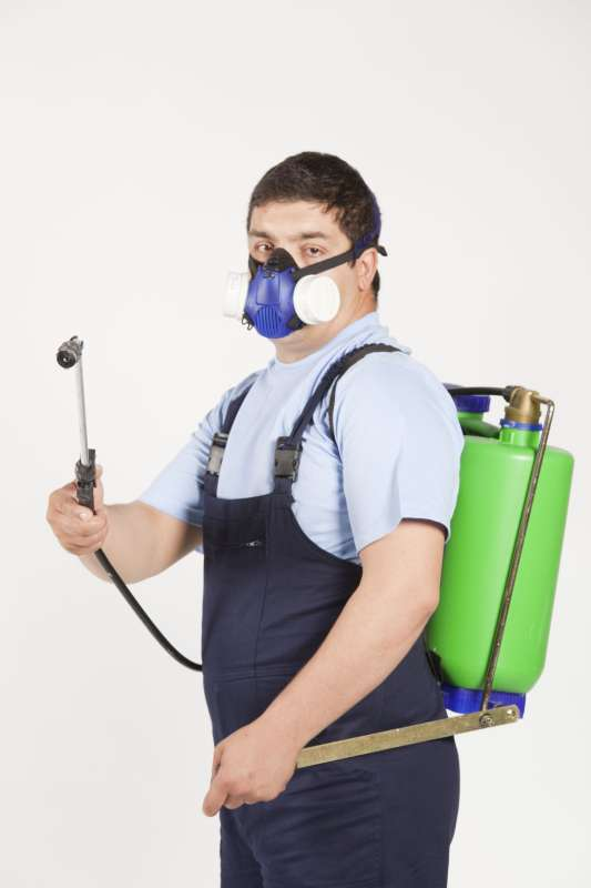 fumigation pest control in