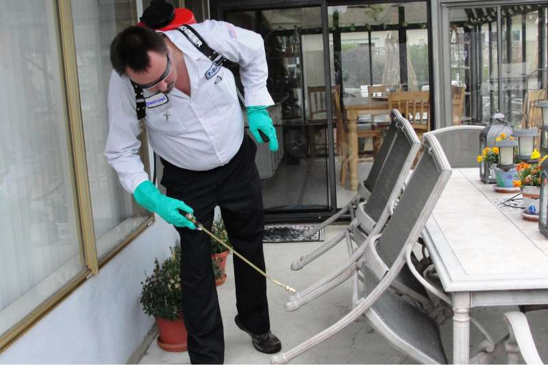 professional pest control services in Anza