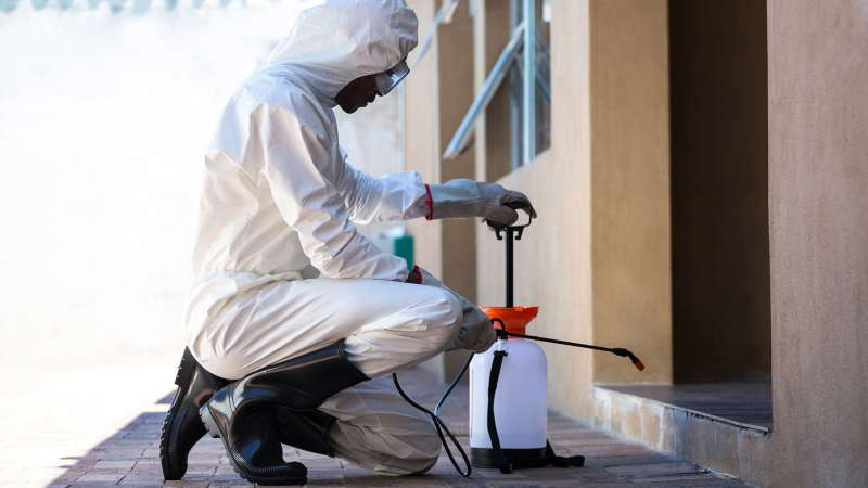 pest control contractors in Hillside