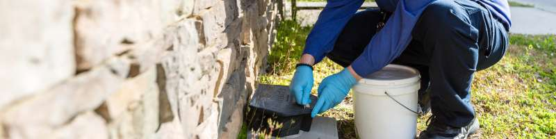 commercial pest control services in Fruithurst