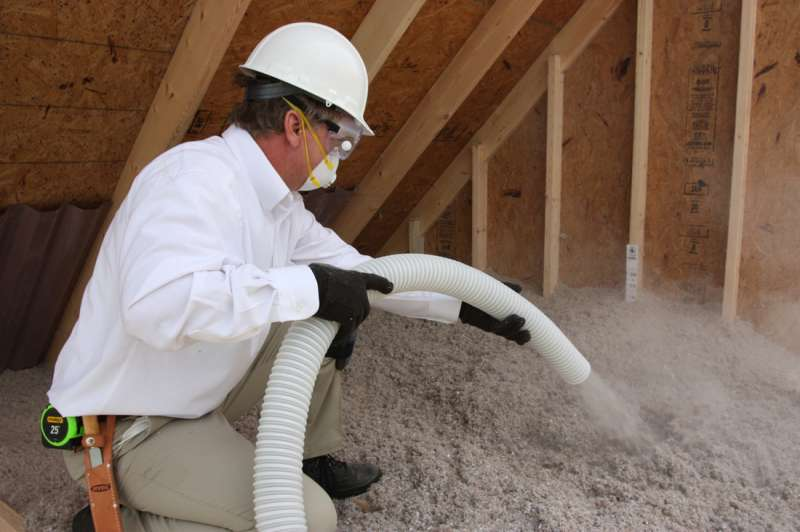pest termite control in Brownsville