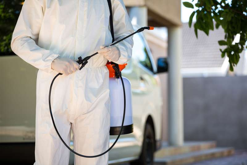 pest control contractors in Supai