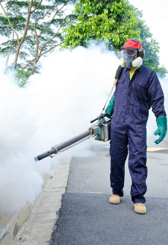 professional pest control services in Polacca