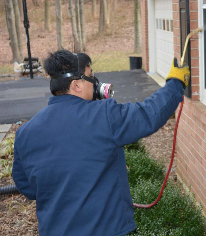 pest control program in Luthersville