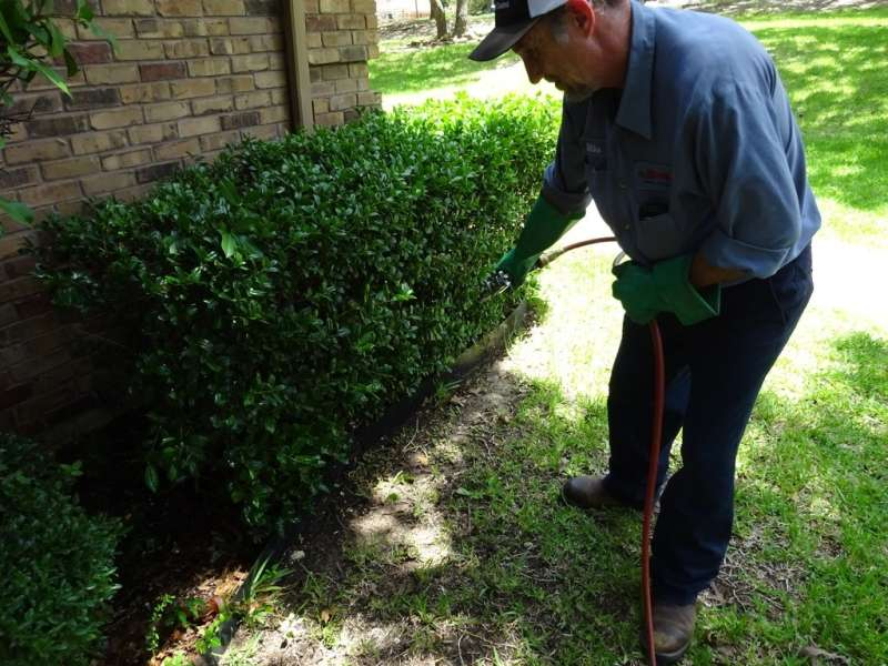 24 Hour Emergency Pest Control Services in Round Rock, TX