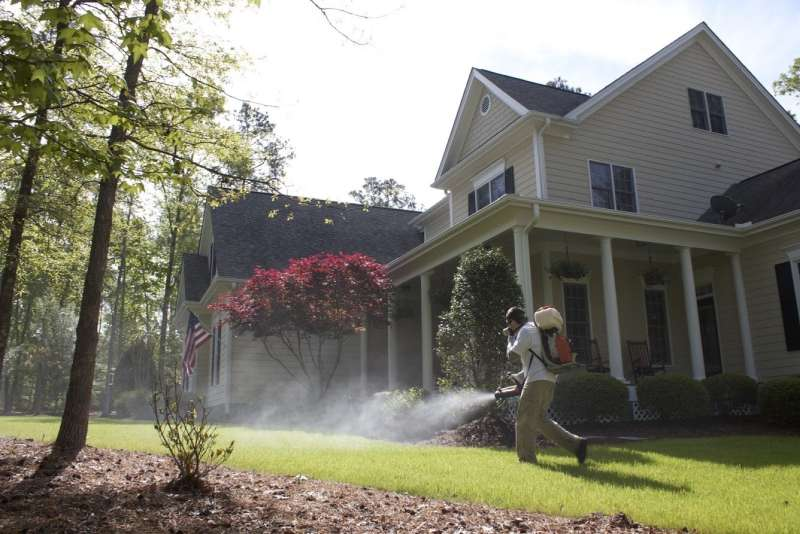 pest control for spiders in West Pensacola
