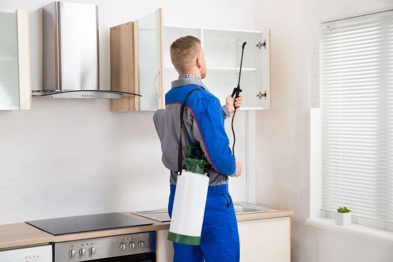 pest control professional in Asherton