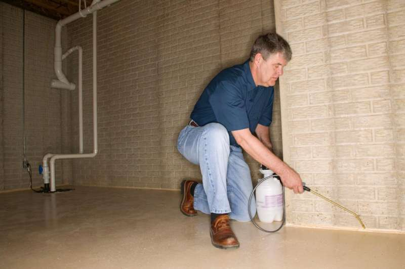 pest termite control in Wright