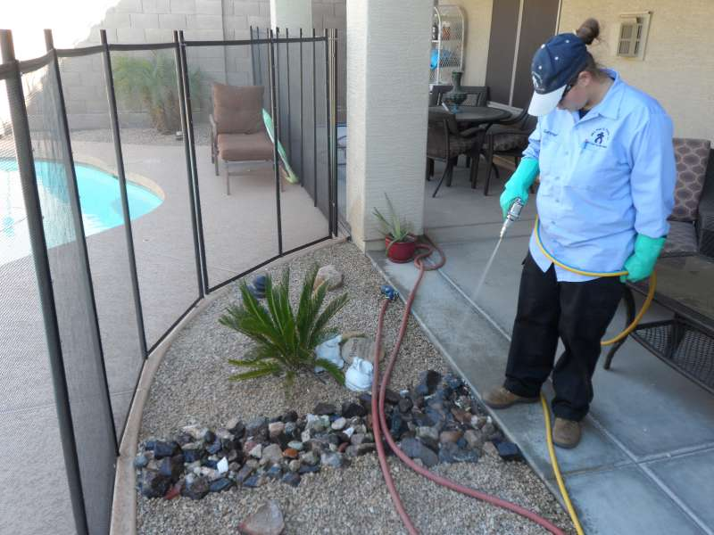 plant pest control in Skull Valley