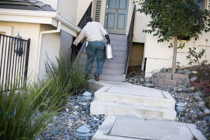 emergency pest control services in Hesperia