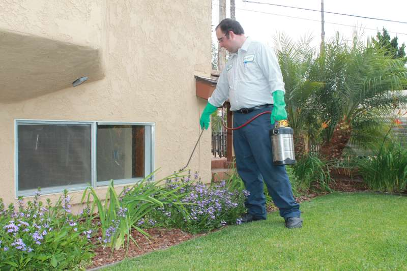 millipede pest control in Holtville