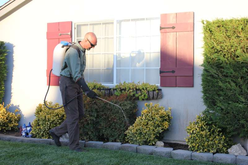 pest services company in Tres Pinos