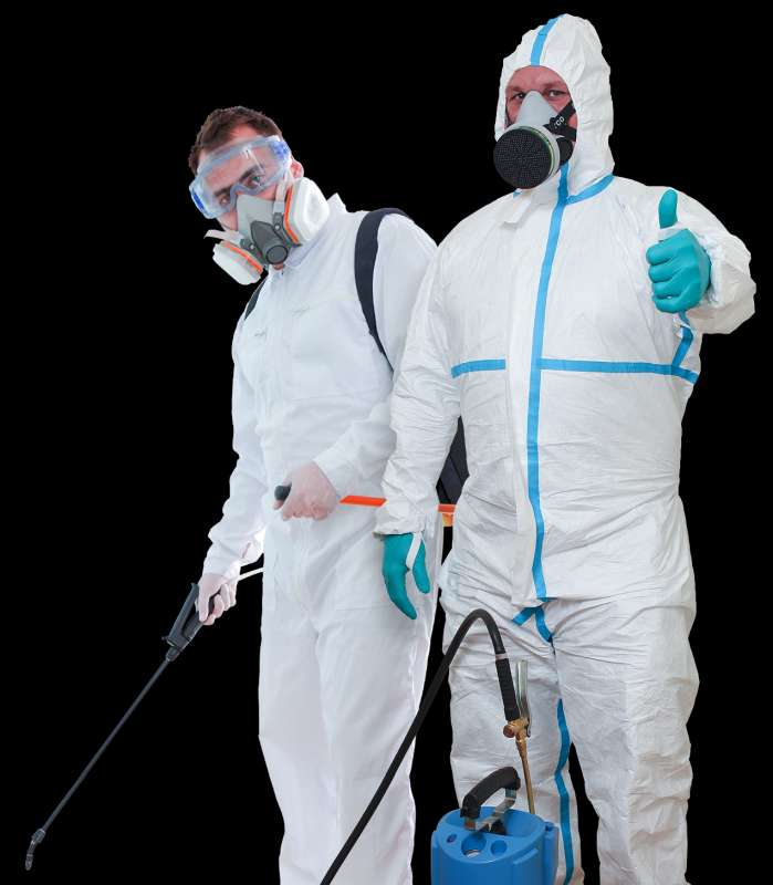 chemical pest control in Monta Vista