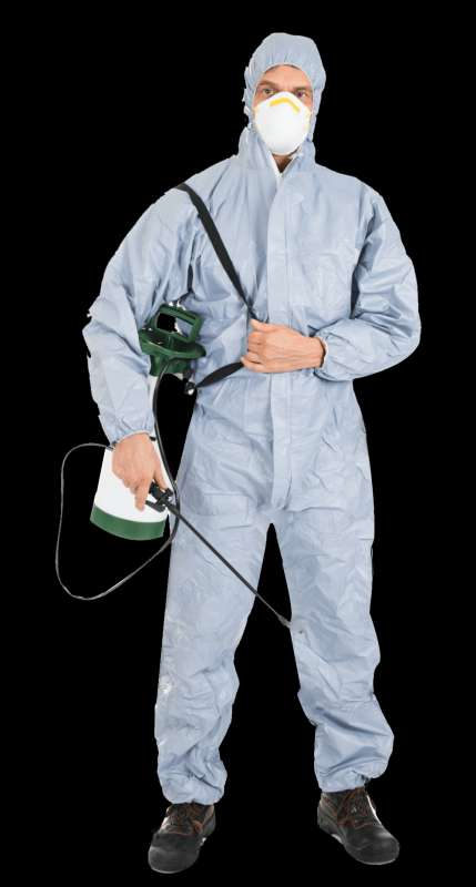 cheap pest control services in Cut