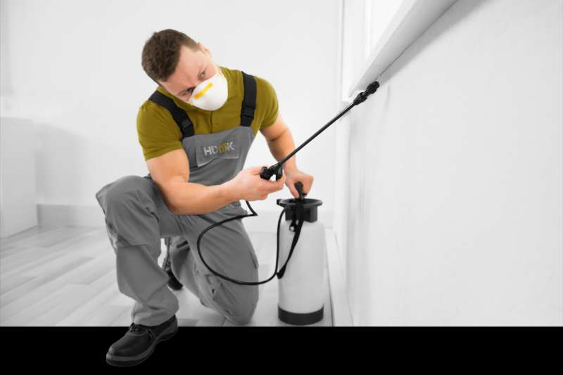 pest control fumigation in Stonyford